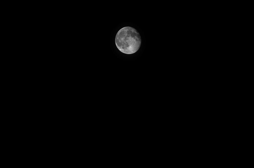 Koreatown Moon